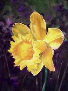 Daffodil by Irina Sztukowski