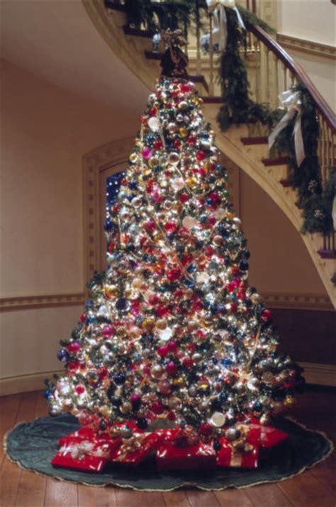 natalies welt 187 blog archive 187 amerikanischer tannenbaum 2