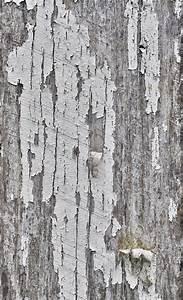 orange peeling paint wood background texture | www ...