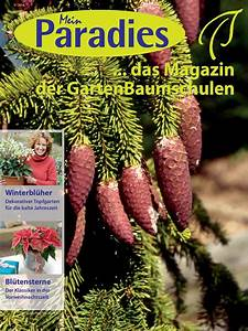 Kalte Wände Was Tun : calam o mein paradies das magazin der ~ Lizthompson.info Haus und Dekorationen