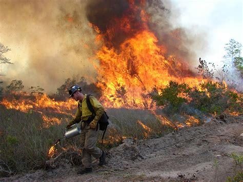 Wildland Fire: Planned Fire Photo Gallery   U.S. National ...