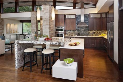 open kitchen design        style
