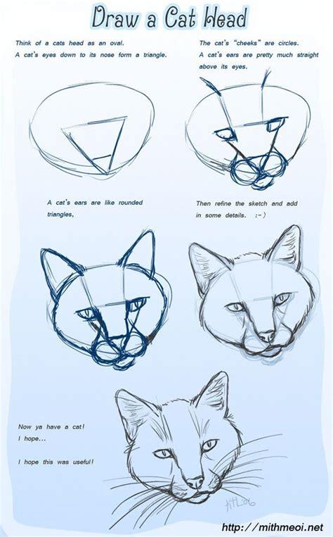drawn head  pencil   color drawn head