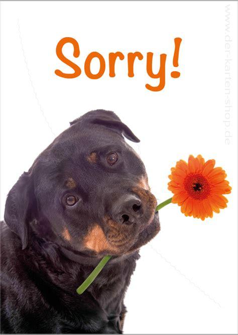 postkarte grusskarte entschuldigungskarte hund mit blume