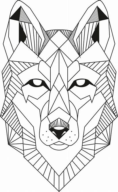 Wolf Vector Lineart Line Cdr Drawing 3axis