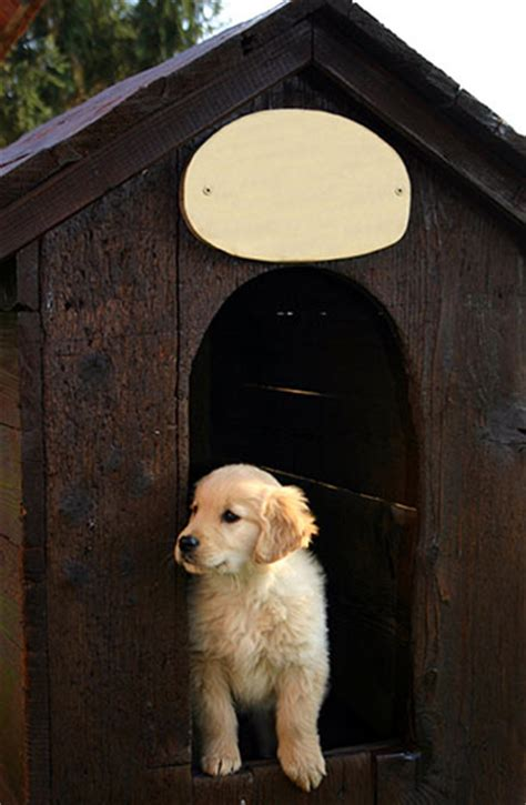 white house pets  history house plans