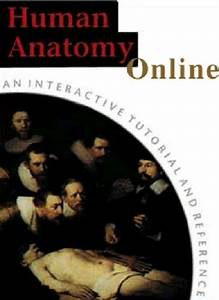 Human Anatomy Online  Laboratory Dissections