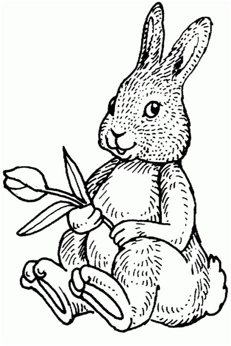 easter rabbit holding flower  printable coloring pages