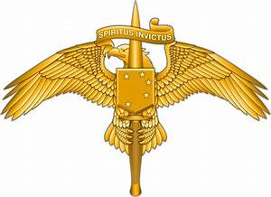 New Uniform Insignia for MARSOC Marines | Defense Media ...