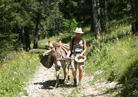 chambres d hotes villard de lans randos en étoile avec des ânes auprès de mon âne