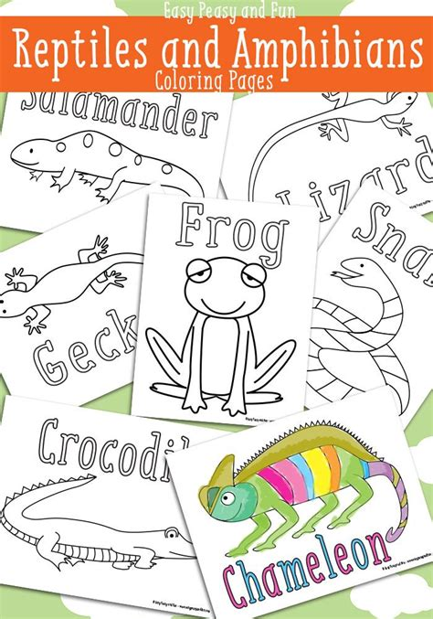 reptile coloring pages free printable easy peasy