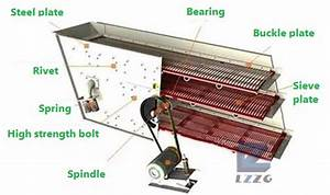 Linear Or Circular Vibrating Screen  What Is The