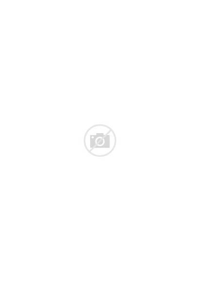 Reception Office Lobby Interior Desk Circular Interiors