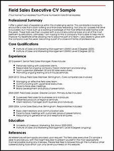 field sales executive cv sample myperfectcv With executive cv format