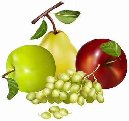 Fruits Fruit Clipart Mixed Toxic Clip Transparent