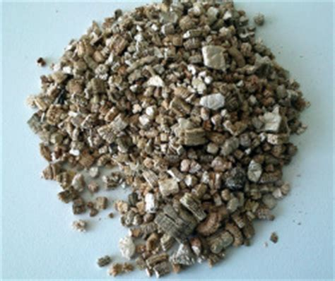 Perlite And Vermiculite For Seed Sowing