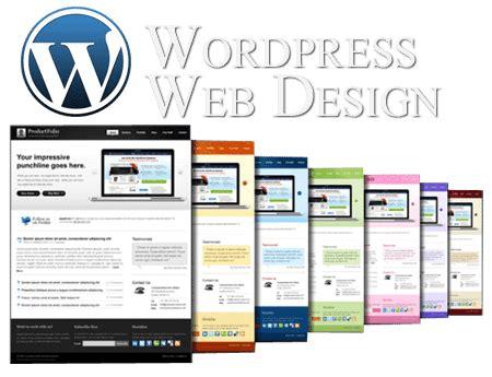 advantages  choosing wordpress  web design nq