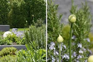 Garten Im Mai : mxliving blog diy wohnen viele ideen zum selbermachen shopping und geschenketipps und ~ Markanthonyermac.com Haus und Dekorationen