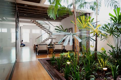 Indoor Gardening : Under Stairs Garden
