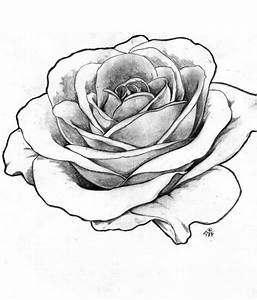 tattoos realistic rose tattoo rose drawings rose outline ...