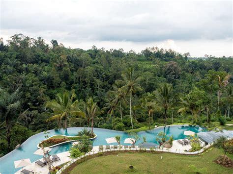 Our Jungle Paradise