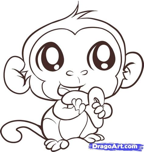 monkey eating drawing monkey step  step forest