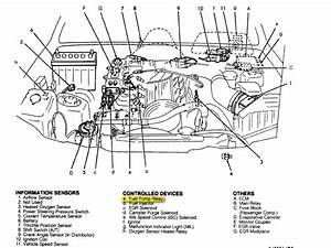 Suzuki Vitara 2002 Power Door Lock Motor Wiring Diagram
