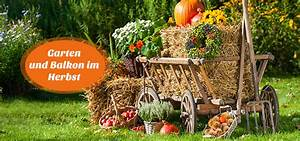 Herbstdeko Für Den Garten : balkon und gartentipps f r den herbst ~ Orissabook.com Haus und Dekorationen