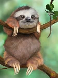 Images For > Baby Sloth In Pajamas Gif | hug a sloth today ...