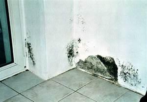 Schimmel Ecke Außenwand : schimmelpilze in der wohnung ebook isbn 9783000129469 ~ Markanthonyermac.com Haus und Dekorationen