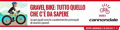 Gravel Bici Bike Asfalto Strade Bianche