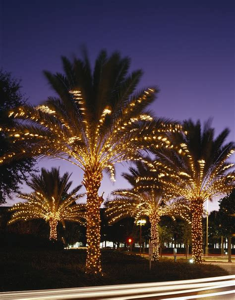 christmas  holiday lights displays  miami