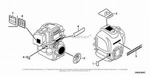 Honda Engines Gx35nt Tms3 Engine  Tha  Vin  Gcast