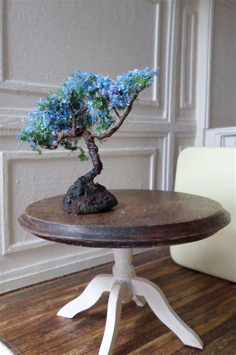miniature jacaranda bonsai miniature bonsai  etsy