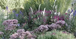 Garten Im Oktober : bl tenstauden im oktober mein sch ner garten ~ Lizthompson.info Haus und Dekorationen