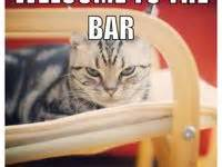 bar exam images  pinterest ha ha funny stuff