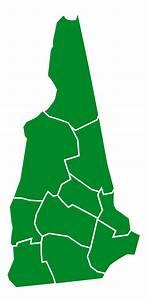 New Hampshire Democratic primary, 2016 - Wikipedia