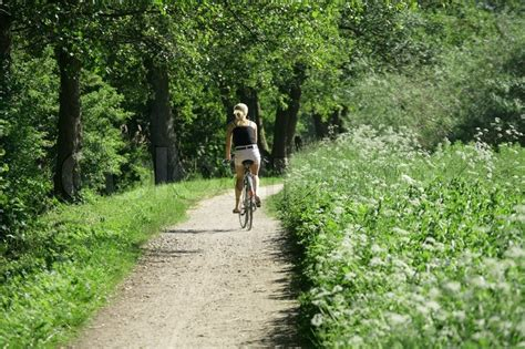 Girl On Bike On A Forest Path In ...