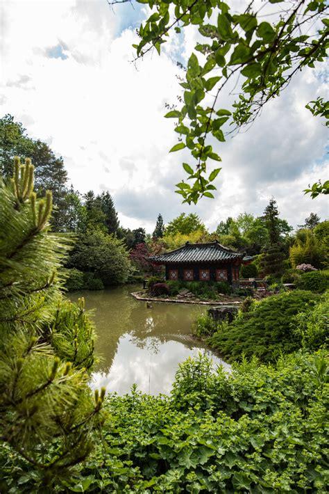 Japanischer Garten Münzesheim japanischer garten m 252 nzesheim foto bild landschaft