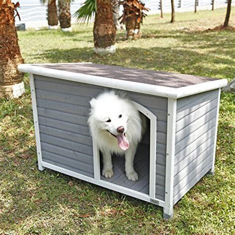 dog house   dog house reviews  ratings