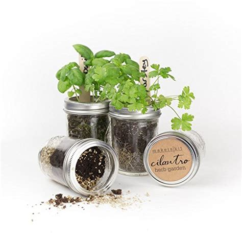 indoor herbs offer many advantages