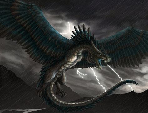 Wyvern Storm By Fleetingember On Deviantart