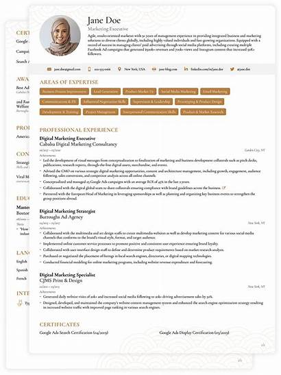 Cv Executive Templates Template Vitae Curriculum Sample