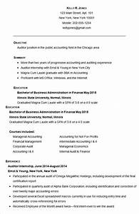 19 accounting resume templates pdf doc free With free accounting resume templates