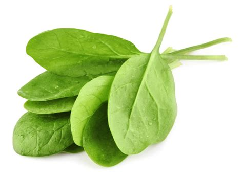 calcium in spinach spinach health benefits uses precautions medical news today