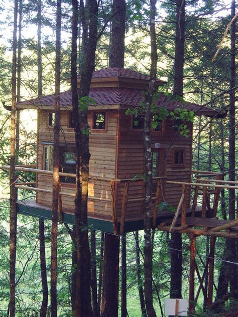 tree house hotel redwood forest pin by marilyn koehne on tree houses pinterest