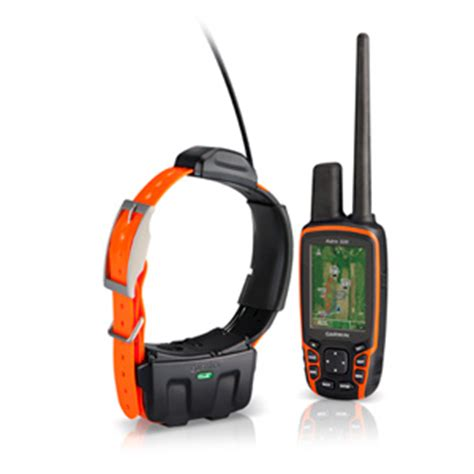 collar clinic dog tracking gps electronic collars