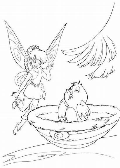Coloring Pages Fawn Tinkerbell Fairy Disney