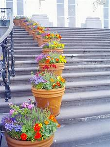 How, To, Decorate, The, Outdoor, Steps, With, Flower, Pots