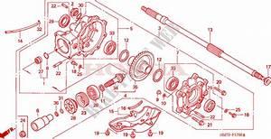Final Driven Gear For Honda Trx 400 Fourtrax Foreman 4x4